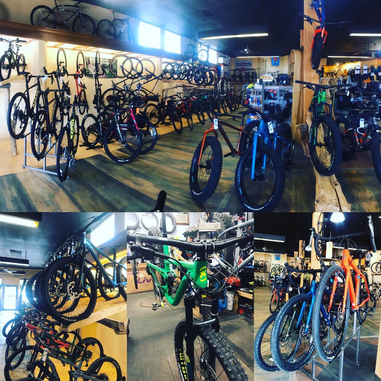 bluedog-bikes