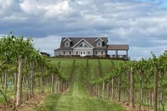 vinyard-exterior